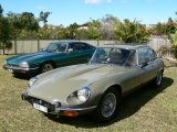 Merv & Lyn Jacksons E type series 3